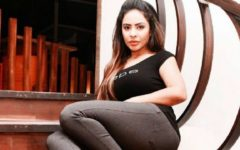 Sri Reddy remarks